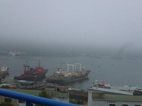 Катерная бухта Владивосток