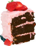 priss_Birthday_cakeslice2.png