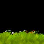 «Рыжий котенок» 0_8c704_9a71e8fd_S