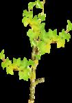 «Brigit_Flowery_Meadow» 0_8d4b3_53ecf9b8_S