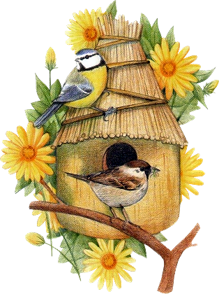Birdhouse17_dhedey.png