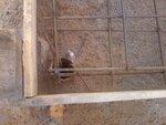 Монолитная железобетонная плита на винтовых сваях 2.jpg