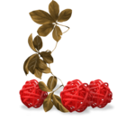 strawberries_winterMelody_ (23).png