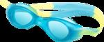 NLD SATSP Glasses.png