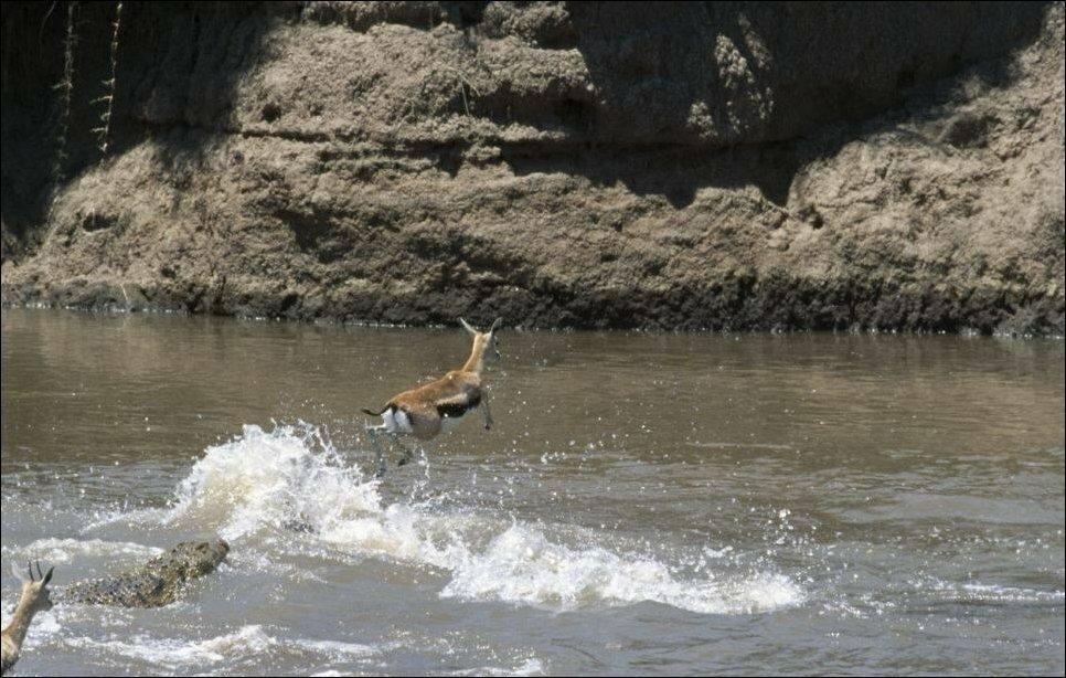 Ушла по воде