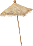 NLD Beach Umbrella Simple.png