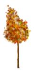 StarLightDesigns_AutumnSunshine_elements (75).png