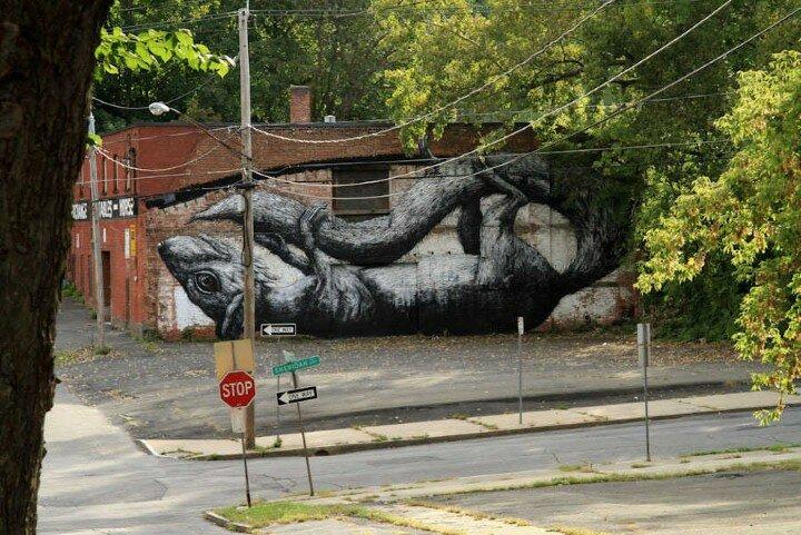 ROA. Уличный художник 16