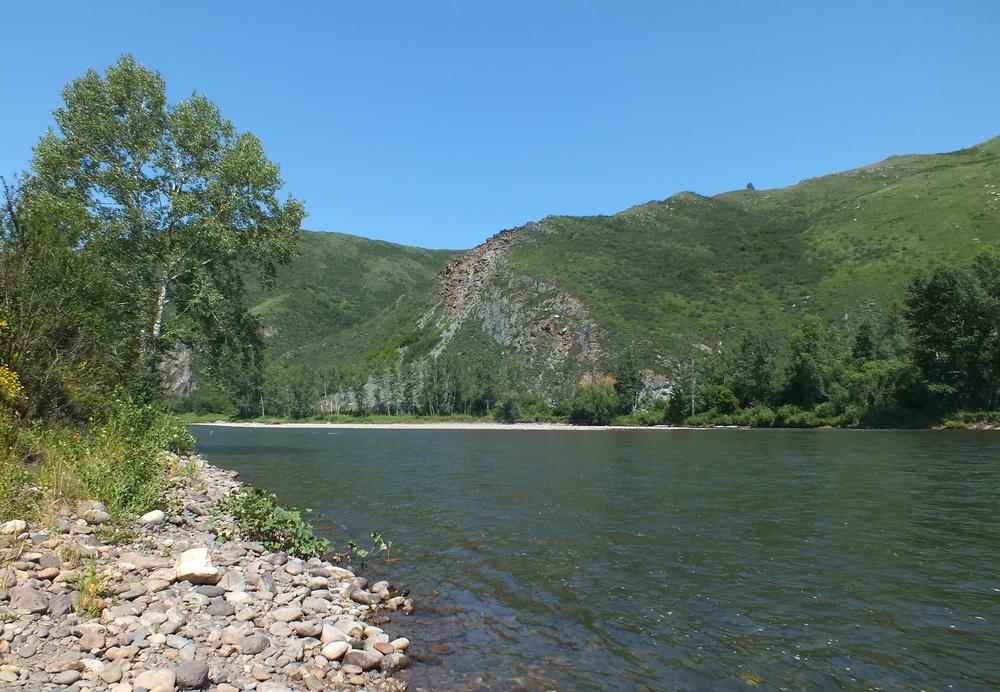 река чарыш алтайский край фото развитии патологического