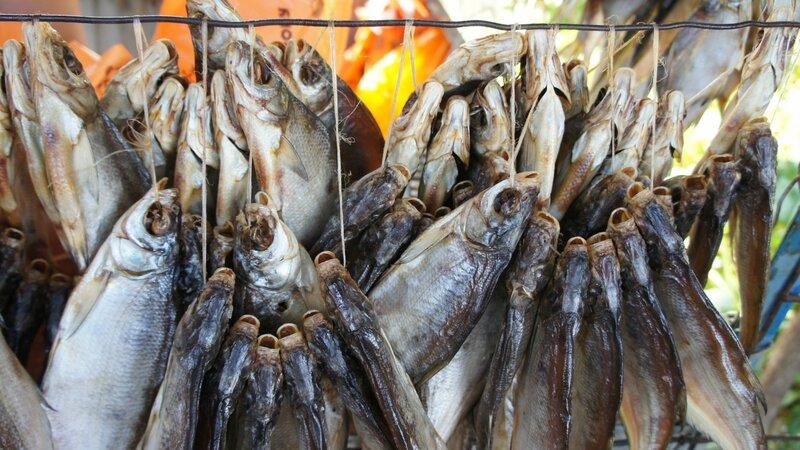 рыбалка астрахань