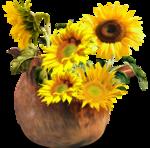 «AD_Sunflower_summer»  0_8c7ef_b1355bf_S