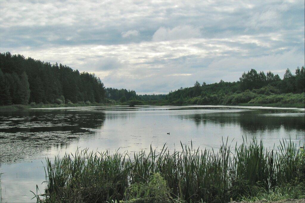 Пушкинские горы, Бугрово. Бугровский пруд