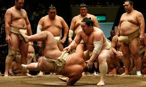 Турнир по сумо впервые пройдет во Владивостоке