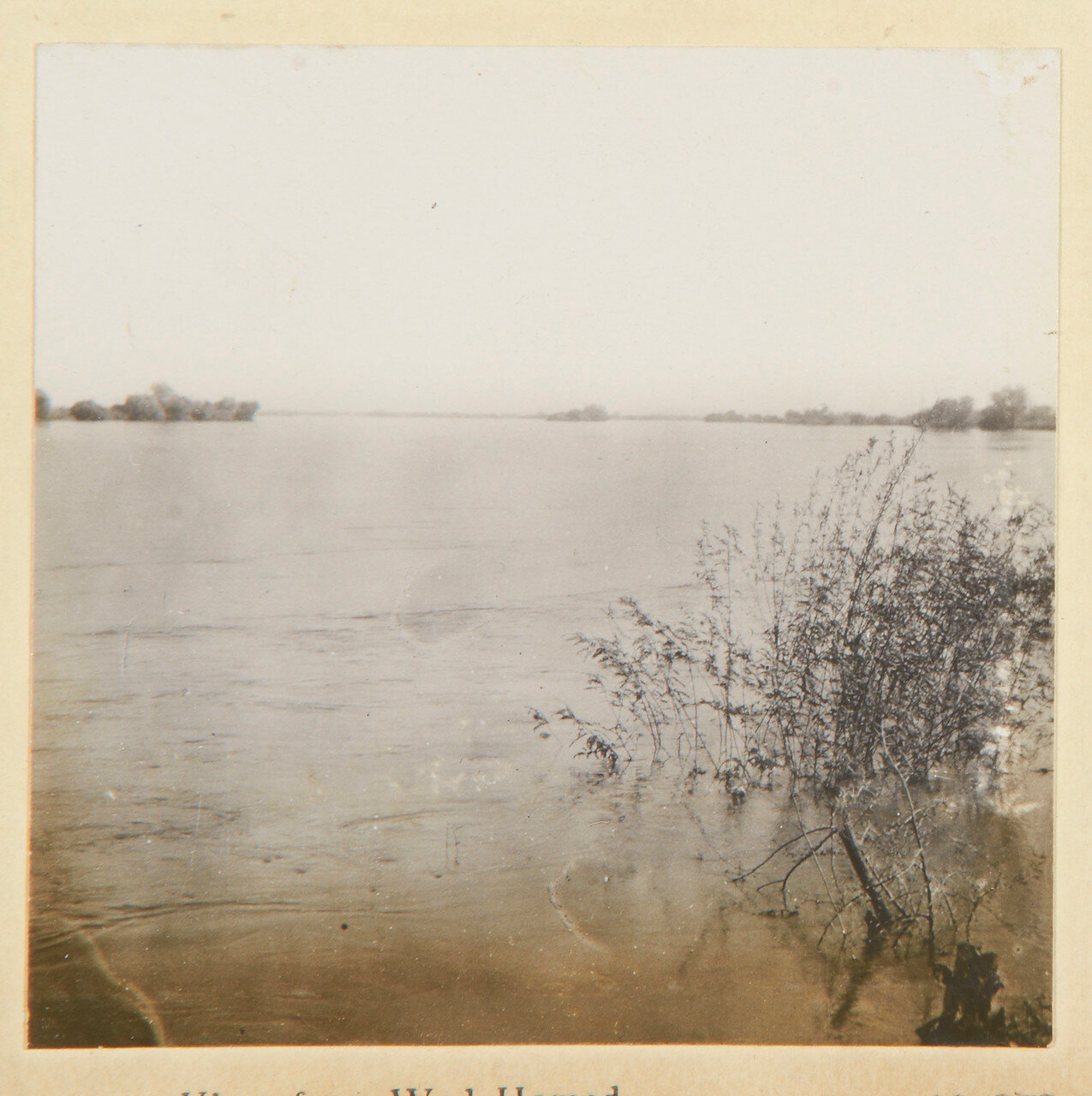 20-25 августа 1898. Вид из Вад Хамида