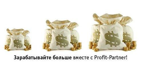 Profit-Partner