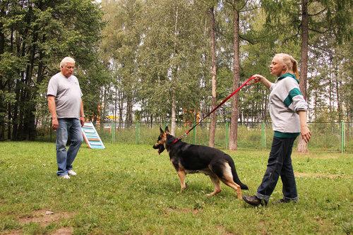 http://img-fotki.yandex.ru/get/6506/156724038.c/0_7be98_33c5e56a_L.jpg