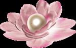 «Dreamin Pink» 0_99b1f_2dec0315_S