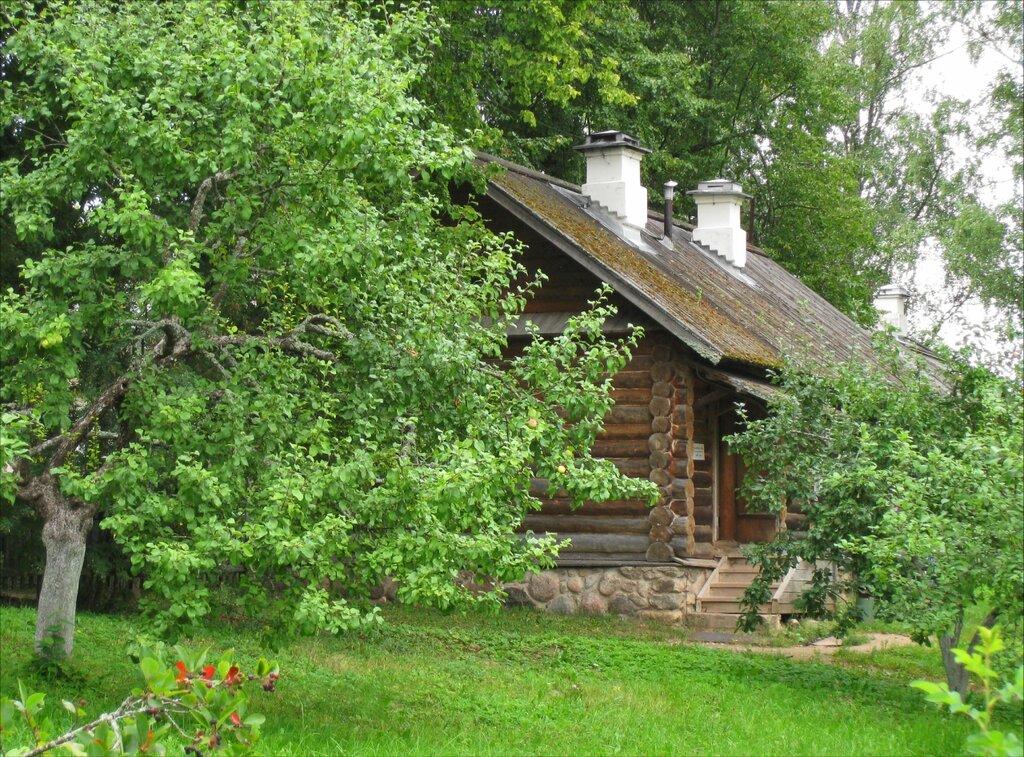 Пушкиногорье, Михайловское, Постройка