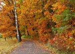 Fall way