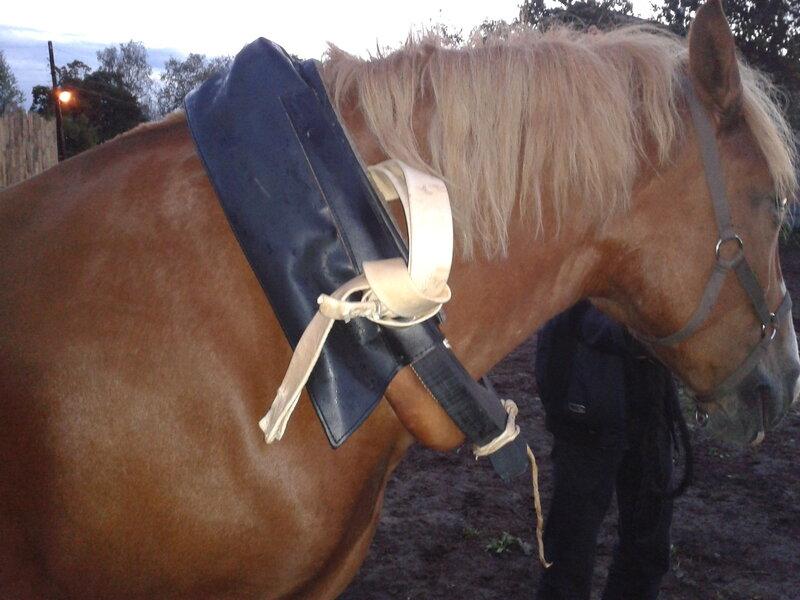 Как самому сделал лошадь 111