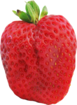 Graphics strawberry