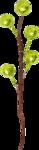 Lilas_Old-Garden_elmt (5).png