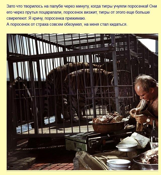 Как снимали Леонова с тигром