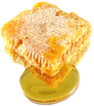 RR_WildMountainHoney_Element (6).png