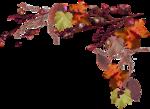 AutumnMelody_by GalinaV_el (55).png