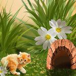 «Рыжий котенок» 0_8c6a1_25908178_S