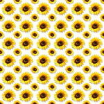 «AD_Sunflower_summer»  0_8c817_3fd96def_S