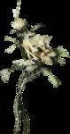 ldavi-ThePoet'sKeepsakes-carvedflower1.png