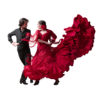 Grisi_Tube_Flamenco_022.png
