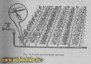 как полить огород