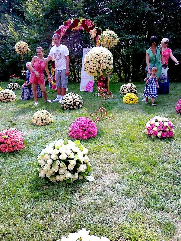 Фото на фоне цветочных композиций