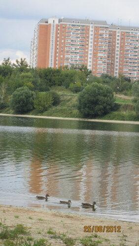http://img-fotki.yandex.ru/get/6508/115943512.67/0_7d8bb_1e0a2478_L.jpg