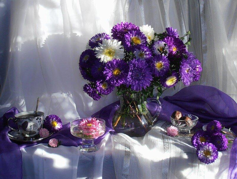 Фиолетовые цветы натюрморт фото