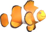 NLD Freebie Clown Fish.png