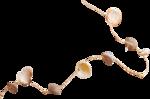 NLD Shells on string 2.png