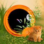 «Рыжий котенок» 0_8c727_9cf1ac24_S