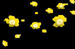 «AD_Sunflower_summer»  0_8c75f_d72df39d_S