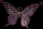 butterflyDsign_elmnt24.png