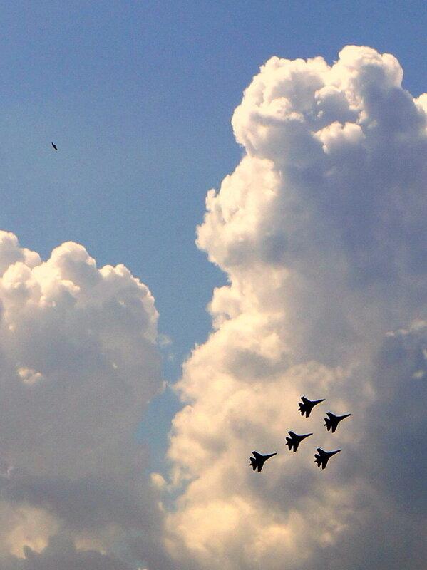 Птицы приняли участие а авиашоу на равных...