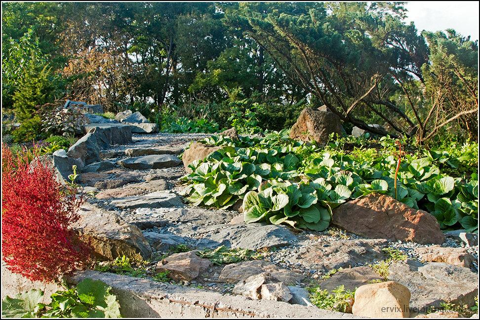 В Ботаническом саду Владивостока