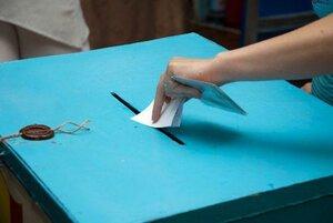 Выборы в Парламент Румынии в Молдове