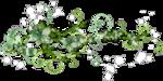 Разделители зелёные