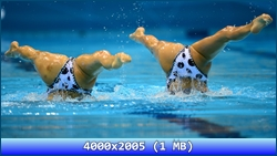 http://img-fotki.yandex.ru/get/6509/13966776.130/0_8b402_6e00b439_orig.jpg