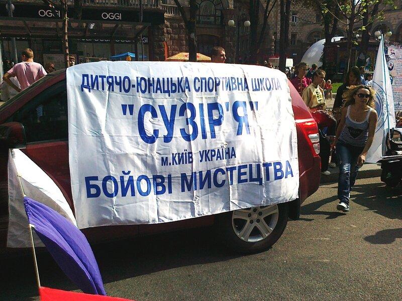 """Вывеска ДЮСШ """"Созвездие"""""""