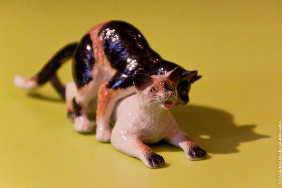 Бельгийский кот
