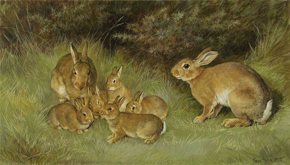 Картинка зайчиха с зайчатами в лесу для детей